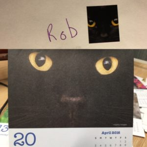 same cat on sticker and calendar page
